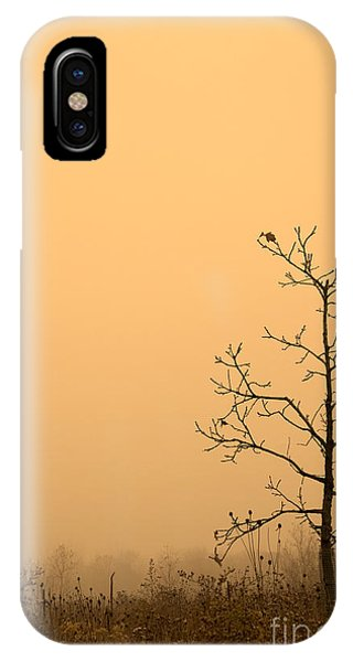 Last Leaves IPhone Case