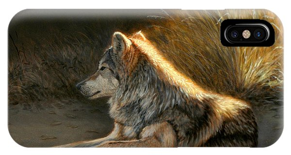Last Light - Wolf IPhone Case
