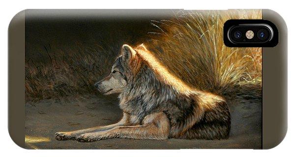 Last Light - Wolf IPhone Case