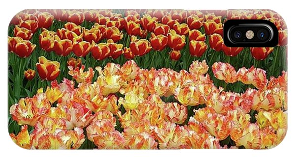 Last One Of My Week Of #tulips. If You Phone Case by Dante Harker