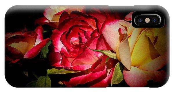 Last Summer Roses IPhone Case