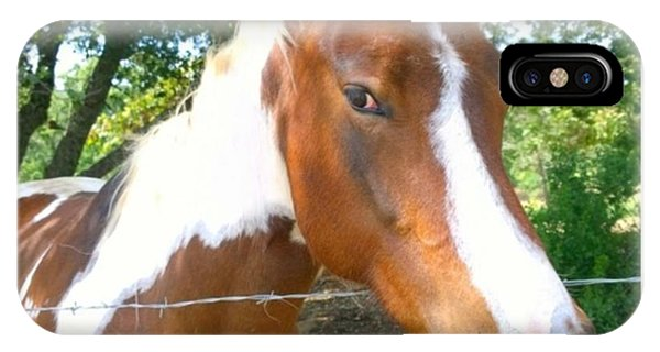 Animals iPhone Case - Last Week, I Met My First #horse! She by Shari Warren