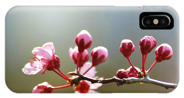 Lasting Beauty IPhone Case