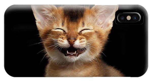 Laughing Kitten  IPhone Case