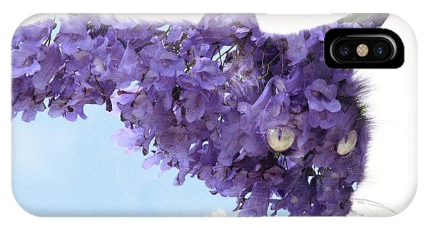 Laurel Tree In Cat IPhone Case
