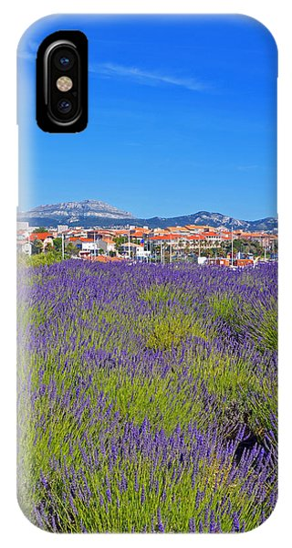 Lavendar Of Provence IPhone Case