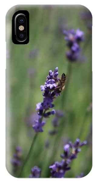 Lavender And Honey Bee IPhone Case