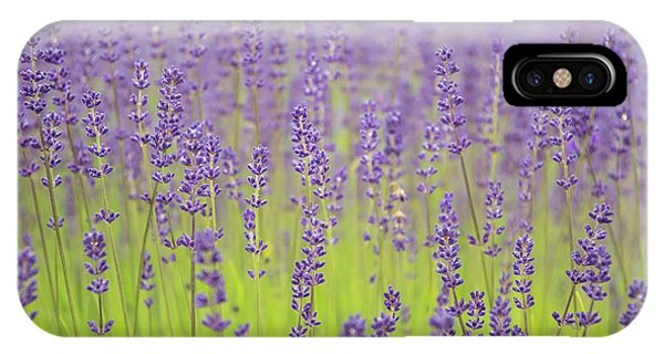 IPhone Case featuring the photograph Lavender Fantasy by Jani Freimann