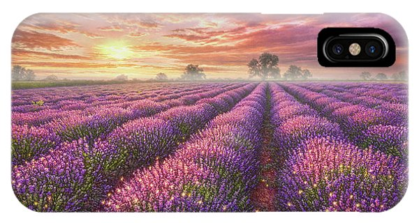 Foliage iPhone Case - Lavender Field by Phil Jaeger