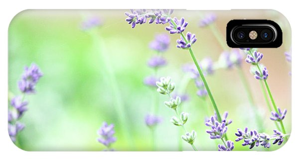 Lavender Garden IPhone Case