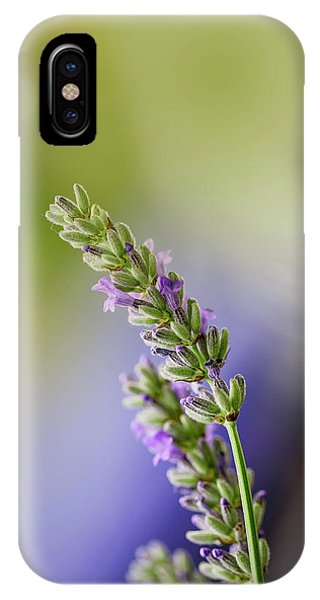 Honeybee iPhone X Case - Lavender by Nailia Schwarz