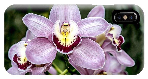 Lavender Orchid IPhone Case