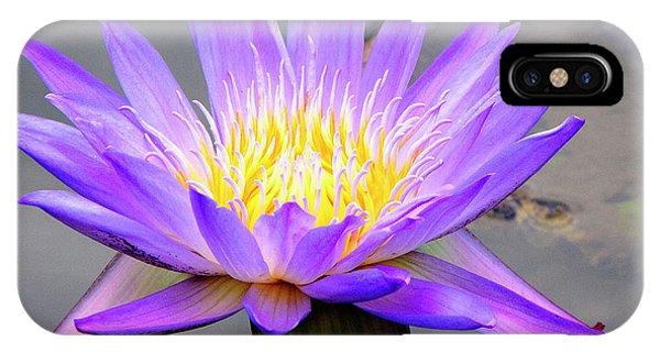 Lavender IPhone Case