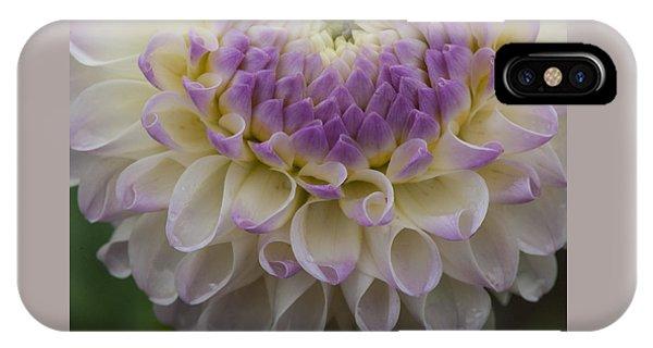 Lavender Shades IPhone Case