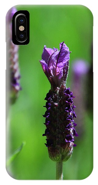 Lavender Spike IPhone Case