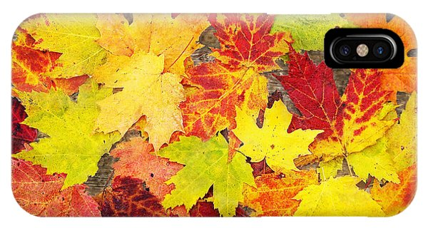 Layered In Leaves IPhone Case