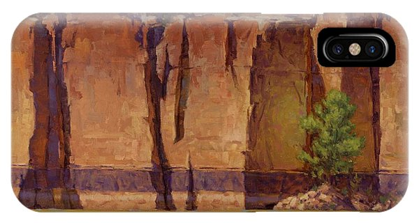 Grand Canyon iPhone Case - Layers In Time by Cody DeLong