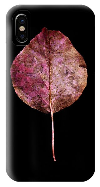 Leaf 20 IPhone Case