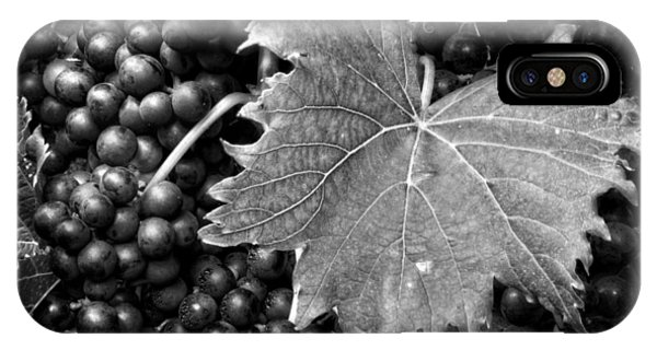Leaf And Grapes In Black And White IPhone Case