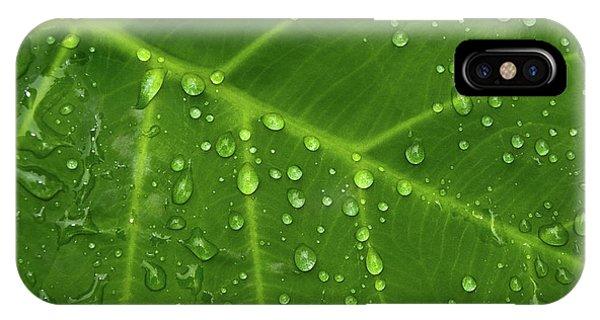 Leaf Drops IPhone Case