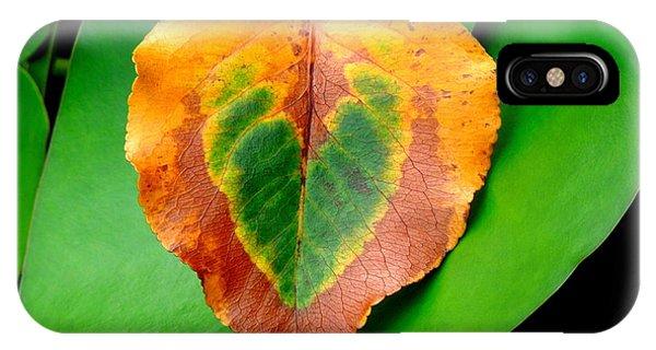 Leaf Leaf Heart IPhone Case