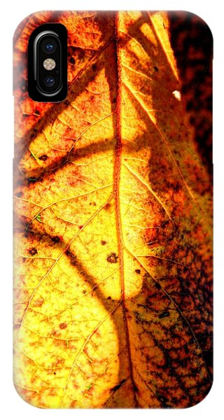 Leaf Light IPhone Case