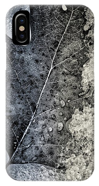 Leaf On Ice IPhone Case