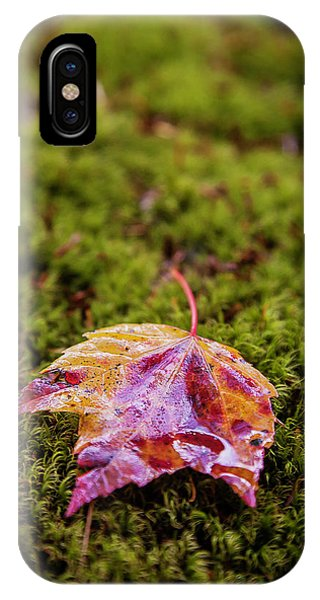 Leaf On Moss IPhone Case