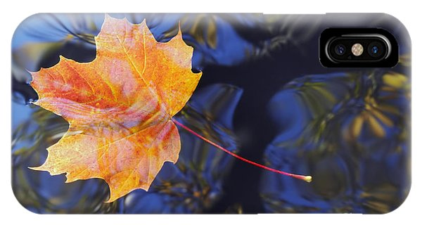 Leaf On The Water IPhone Case
