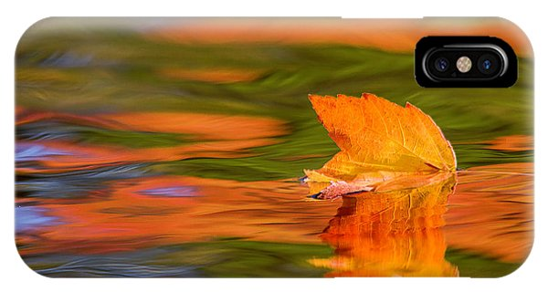 Leaf On Water IPhone Case