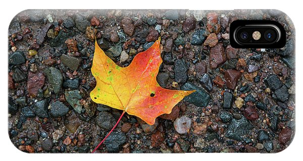 Leaf On Wet Gravel IPhone Case