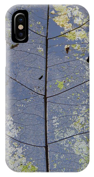IPhone Case featuring the photograph Leaf Structure by Debbie Cundy