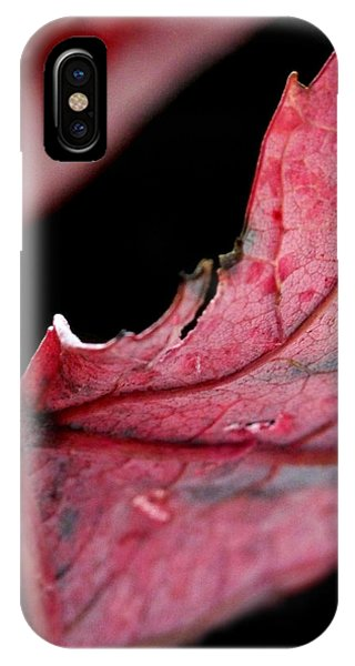 Leaf Study I IPhone Case
