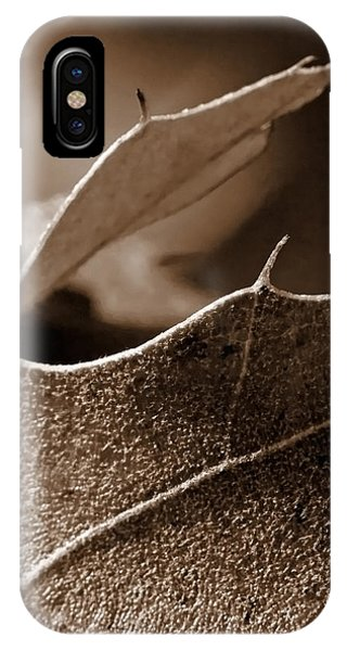 Leaf Study In Sepia II IPhone Case