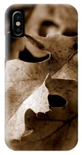 Leaf Study In Sepia IIi IPhone Case