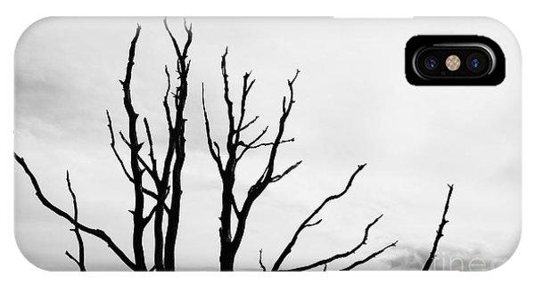 Leafless Tree IPhone Case