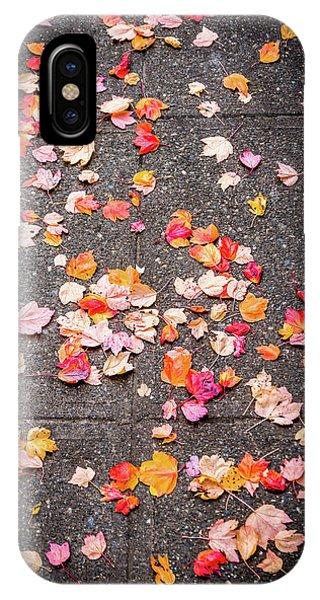 Leafy Autumn Walk IPhone Case