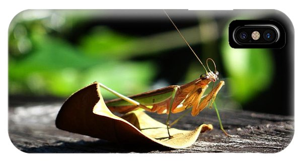Leafy Praying Mantis IPhone Case