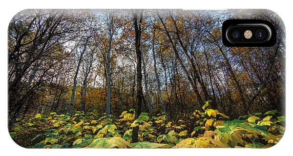 Leafy Yellow Forest Carpet IPhone Case