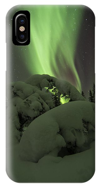 Leaning Spruce Aurora IPhone Case