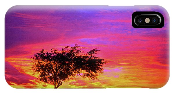 Leaning Tree At Sunset IPhone Case