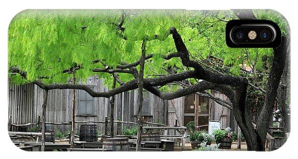 Leaning Tree Phone Case by Teresa Blanton
