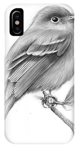Flycatcher iPhone Case - Least Flycatcher by Greg Joens
