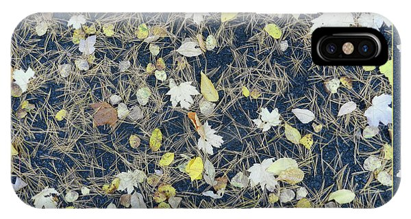 Leaves And Needles On Pavement With Border IPhone Case