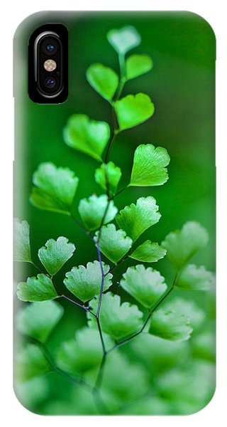 Shrubs iPhone Case - Leaves Rising by Az Jackson
