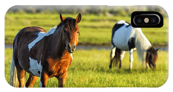 Leaving The Chincoteague Ponies IPhone Case