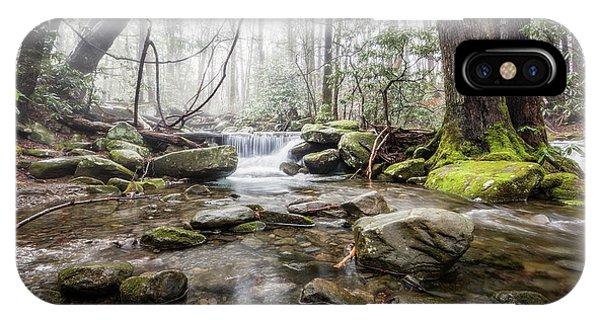 Bear Creek iPhone Case - Leconte Treasure by Everet Regal