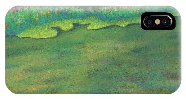Lenox Audubon Pond 3 IPhone Case
