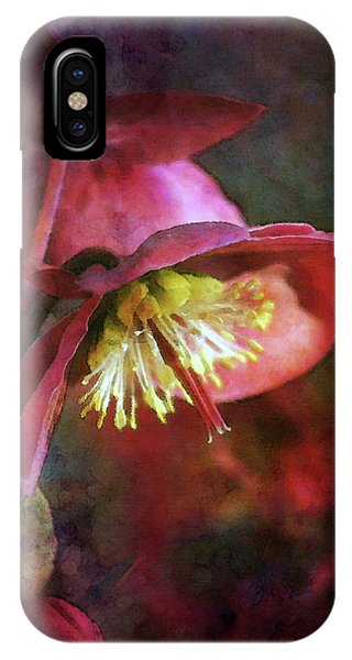 Lenten Rose Bowing To The Sun 8712 Idp_2 IPhone Case