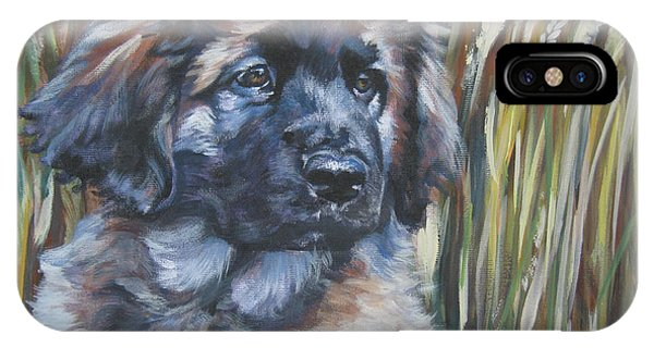 Pup iPhone Case - Leonberger Pup by Lee Ann Shepard